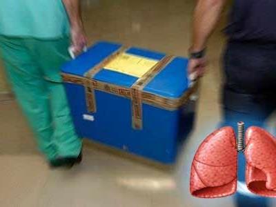 """Los pulmones ahora """"seguirán respirando"""" entre trasplantes"""