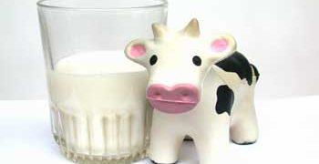 La leche a examen: lista de las mejores leches
