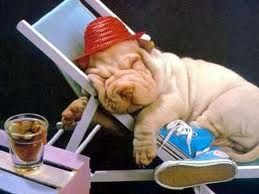 Una buena siesta debe durar 26 minutos