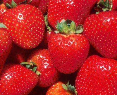 Las fresas fortalecen los globulos rojos