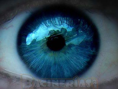 El porqué de los ojos azules