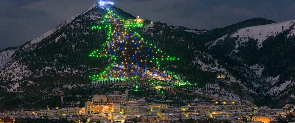 El rbol de navidad m s grande del mundo for Arbol mas grande del mundo