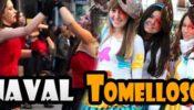 CarnavalTomelloso2012-Banner1-700