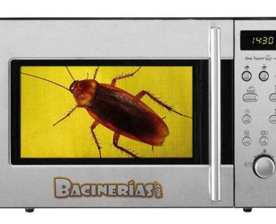 ¿Por qué los insectos no mueren en el microondas?