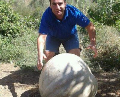 Una huerta de la aldea de San Benito da una calabaza de casi 80 kilos