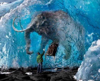 Un niño ruso descubre un mamut que murió hace 30.000 años