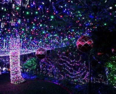 La casa con más luces navideñas del mundo