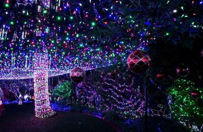 xmas-lights-4-650x422