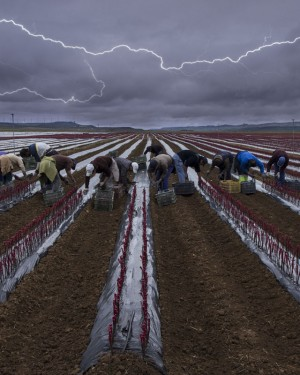 """Las mejores fotografías del concurso """"Mundo Rural"""" 2014"""