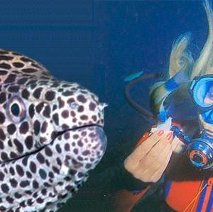 La submarinista que se hizo amiga de una morena