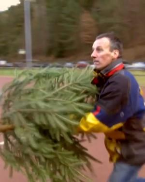 Esto es lo que hacen los alemanes con sus árboles de Navidad en enero